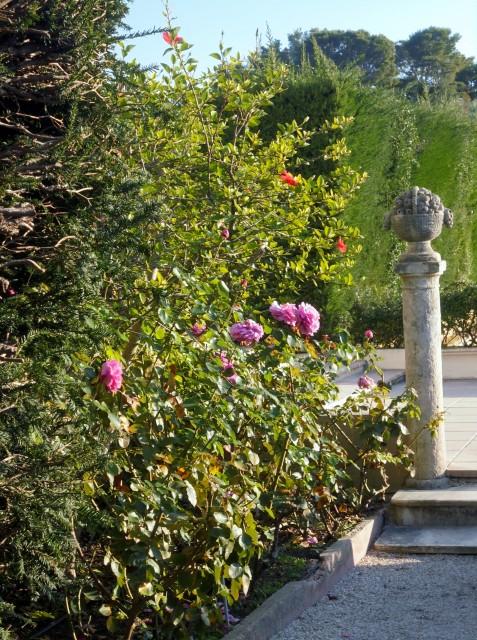 jardin de la Villa Rothschild 23gk7x